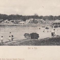 BUCURESCI, BAI LA TEI - Carte Postala Muntenia pana la 1904, Bucuresti, Necirculata, Printata