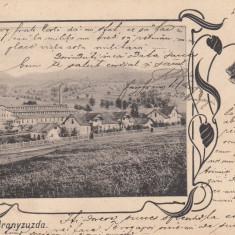 RAKOVA ARANYZUZDA, CIRCULATA APR. ''904 - Carte Postala Transilvania pana la 1904, Printata