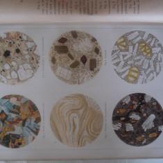 Plansa color cu sectiuni microscopice ale unor tipuri de roci, anii 1885-1890