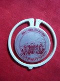 Insigna Liceul A.T.Laurian 125 Ani Botosani , plastic
