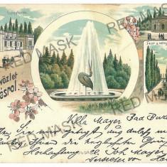 2892 - L i t h o, Timis, BUZIAS - old postcard - used - 1899 - Carte Postala Banat pana la 1904, Circulata, Printata