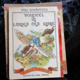 VOINICEL IN LUMEA CEA MARE IRINA TEODORESCU - Carte de povesti