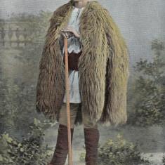 CIOBAN ROMAN DIN TRANSILVANIA - Carte Postala Transilvania pana la 1904, Necirculata, Printata