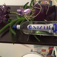 VODCA FRANTUZEASCA -1L - Vodka