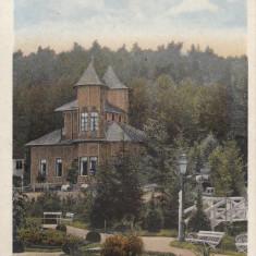 PITESTI, VEDERE DIN TRIVALE NOV. ''914 - Carte Postala Muntenia 1904-1918, Circulata, Printata