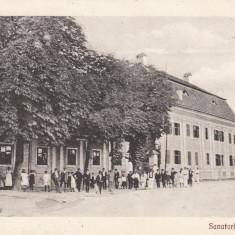 AVRIG, SANATORIUL - Carte Postala Transilvania 1904-1918, Necirculata, Printata