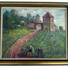 Tablou ulei pe panza maruflata - peisaj podgorie vita de vie, lucare semnata, Natura, Realism