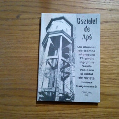 CASTELUL DE APA * Un Almanah de Toamna al orasului Targu-Jiu - Vasile Vasiescu