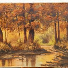 Peisaj ulei pe panza semnat, autor maghiar T. Fulop Gy. - Pictor roman, Arbori, Realism