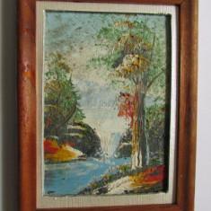 TABLOU-PEISAJ CU CASCADA-inramat, ulei pe carton, vintage - Tablou autor neidentificat, Peisaje, Realism