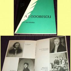 A.I. Odobescu de D. Pacurariu, biografie cu ilustratii
