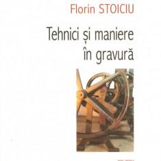 Florin Stoicu - Tehnici si maniere in gravura - 417577 - Album Pictura