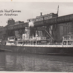 CONSTANTA, VASUL CARMEN PAVILION PALESTINIAN - Carte Postala Dobrogea 1904-1918, Necirculata, Fotografie