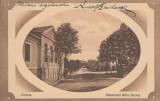 CRAIOVA , BULEVARDUL MIHAI BRAVU , CIRCULATA APR.''914, Printata