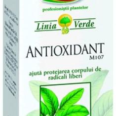 Antioxidant M107 FARES - Produs tratarea infectiilor urinare