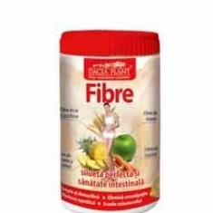 FIBRE 480g DACIA PLANT