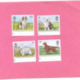 11=ANGLIA-Marea Britanie 1979-Serie de 4 timbre tematica CAINI,MNH, Nestampilat