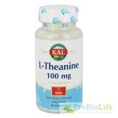 L-THEANINE 100MG 30CPR- Memorie si concentrare - Supliment sport