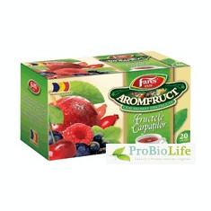 Ceai Aromfruct Fructele Carpatilor FARES - Ceai naturist