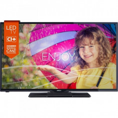 Televizor LED Horizon 24HL719H Seria HL719H 61cm negru HD Ready