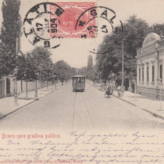GALATI STRADA MIHAI BRAVU SPRE GRADINA PUBLICA, TCV, CLASICA, CIRC.JAN. ''904 - Carte Postala Moldova pana la 1904, Circulata, Printata
