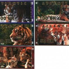 ATLANTIC BANK- LOT TIGRII 2016- POLYMER- UNC!! - bancnota america