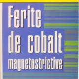 FERITE DE COBALT MAGNETOSTRICTIVE de OVIDIU FLORIN CALTUN, 2009 - Carte Geografie