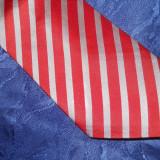 Cravata matase naturala, Viessmann