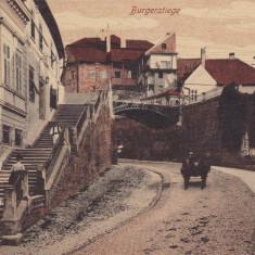 SIBIU, STRADA BURGER - Carte Postala Transilvania dupa 1918, Necirculata, Printata