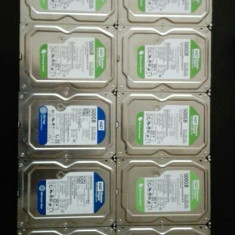 HDD 500 Gb - Hard Disk Western Digital, 500-999 GB, Rotatii: 7200, SATA2, 32 MB