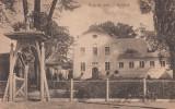 SEBESUL SASESC , BAIA DE SARE, Sebes, Necirculata, Printata