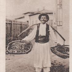 TIPURI DIN ROMANIA, VANZATOR DE ZARZAVAT - Carte postala tematica, Necirculata, Printata