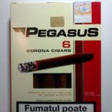 Tigari foi Pegasus 55 g - Foite tigari