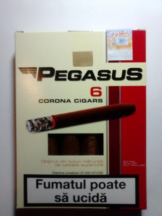 Tigari foi Pegasus  55 g