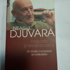 CIVILIZATII SI TIPARE ISTORICE -UN STUDIU COMPARAT AL CIVILIZATIILOR -N.DJUVARA - Istorie
