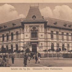 TARGU JIU, SALUTARI DIN TARGU JIU, GIMNAZIUL TUDOR VLADIMIRESCU - Carte Postala Oltenia dupa 1918, Necirculata, Printata