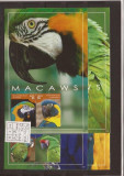 Nevis - Macaws parrots, Natura, Nestampilat