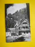 HOPCT 4075  VALEA VINULUI /IN ANUL 1963  -JUD SATU MARE  -RPR -CIRCULATA, Printata