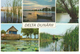 CPI (B7121) CARTE POSTALA - DELTA DUNARII, Circulata, Fotografie