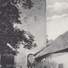 MEDIAS, TURNUL MARIEI - Carte Postala Transilvania dupa 1918, Necirculata, Printata
