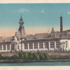 VATRA DORNEI - Carte Postala Bucovina dupa 1918, Necirculata, Printata