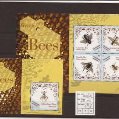 Dominica - Wasp & Bees, Natura, Nestampilat