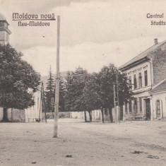 MOLDOVA, MOLDOVA NOUA, CENTRUL ORASULUI - Carte Postala Moldova dupa 1918, Necirculata, Printata