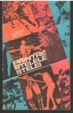 C6777 PRINTRE STELELE STELEI - OCTAVIAN VINTILA