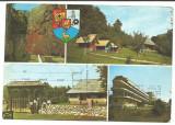 @carte postala(cod 2788/81)-GORJ-RUNCU-Cheile Sohodolului, Circulata, Fotografie