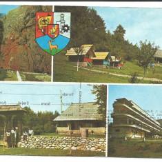 @carte postala(cod 2788/81)-GORJ-RUNCU-Cheile Sohodolului - Carte Postala Moldova dupa 1918, Circulata, Fotografie