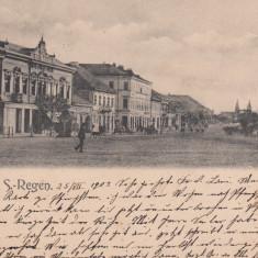 REGHIN, SALUTARI DIN REGHINUL SASESC, CIRCULATA JUL.''903 - Carte Postala Transilvania pana la 1904, Printata