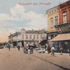 PLOIESTI, SALUTARI DIN PLOIESTI, MAGAZINE, COLONIALE, DENTIST - Carte Postala Muntenia dupa 1918, Necirculata, Printata