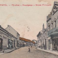 LIPOVA ARAD SALUTARI DIN LIPOVA STRADA PRINCIPALA MAGAZINE CIRCULATA - Carte Postala Crisana dupa 1918, Printata
