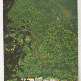 Bnk cp Baile Herculane - Vedere - circulata - marca fixa - Carte Postala Banat dupa 1918, Printata